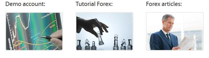 Liteforex south india